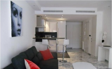 Modern apartment with a terrace close to Croisette