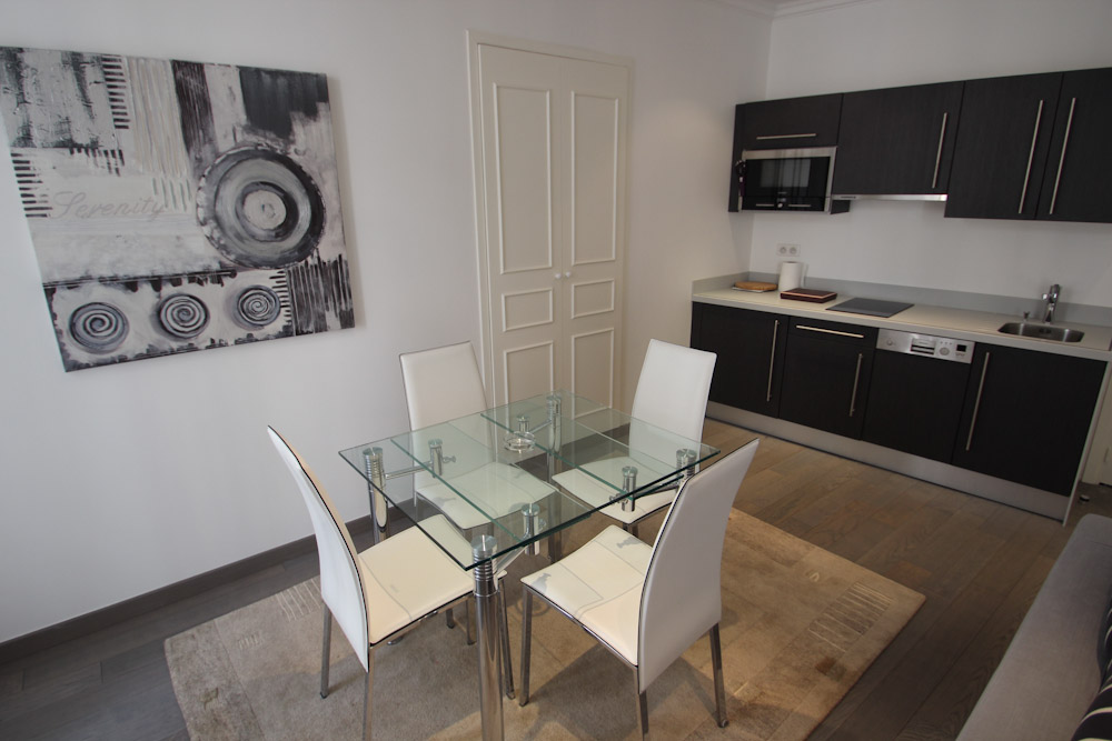 Two bedroom, two bathroom in the Palais Center area