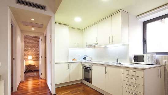 Two bedroom apartment in Borne quarter