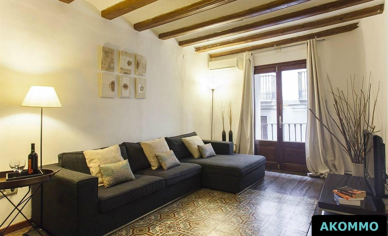 Wonderful five bedroom apartment in the Gothic quarter